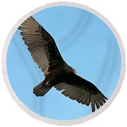 Turkey Buzzard 2 Round Beach Towel