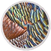 Turkey Feather Colors Round Beach Towel