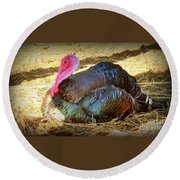 Turkey Time Out Round Beach Towel