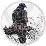 Turkey Vulture Round Beach Towel