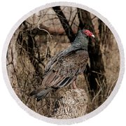 Turkey Vulture Portrait Round Beach Towel
