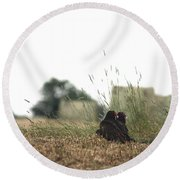 Turkey Vultures Round Beach Towel