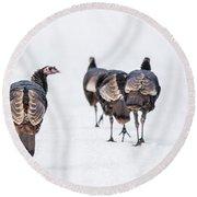 Turkeys Round Beach Towel