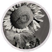 Turkish Sunflower 3 Round Beach Towel