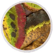 Turning Leaves 2 Round Beach Towel