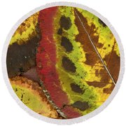 Turning Leaves 3 Round Beach Towel