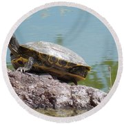 Turtle At The Lake Round Beach Towel