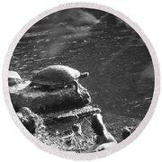 Turtle Bw Round Beach Towel by Nelson Watkins