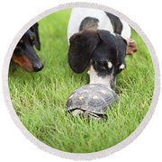 Turtle Chase Round Beach Towel
