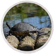 Turtle Float Round Beach Towel