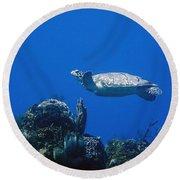 Turtle Flying Underwater Round Beach Towel