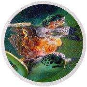Turtle Reflection Round Beach Towel
