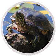 Turtle Smile Round Beach Towel