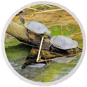 Turtles At The National Zoo Round Beach Towel