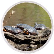 Turtles Round Beach Towel