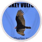 Turkey Vulture Educational Round Beach Towel