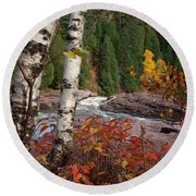 Twin Aspens Round Beach Towel by James Peterson