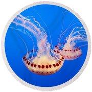 Twin Dancers - Large Colorful Jellyfish Atlantic Sea Nettle Chrysaora Quinquecirrha  Round Beach Towel