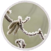 Twisted Frost Round Beach Towel by Anne Gilbert