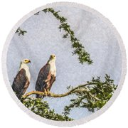 Two African Fish Eagles Haliaeetus Vocifer  Round Beach Towel
