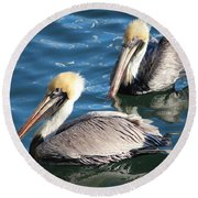 Two Beautiful Pelicans Round Beach Towel