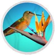 Two Birds Of Paradise Round Beach Towel