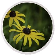Two Black Eyes On The Macomb Orchard Trails Round Beach Towel
