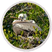 Two Brown Pelicans Round Beach Towel