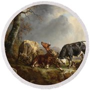 Two Bulls Defend Against A Cow Attacked By Wolves Round Beach Towel
