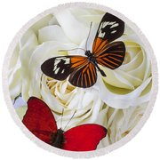 Two Butterflies On White Roses Round Beach Towel