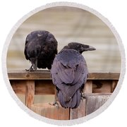 Two Common Ravens Corvus Corax Interacting Round Beach Towel