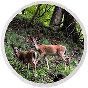 Two Deer Round Beach Towel
