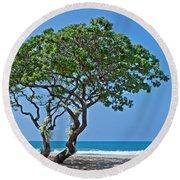 Two Heliotrope Trees On Tropical Beach Art Prints Round Beach Towel