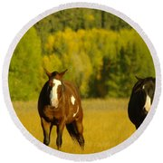 Two Horses Walking Along Round Beach Towel