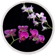 Two Kind Of Orchid Flower Round Beach Towel