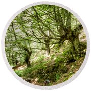 two little brothers Chasing Fairies in theBeech Forest on a summer day Round Beach Towel