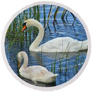Two Mute Swans Round Beach Towel