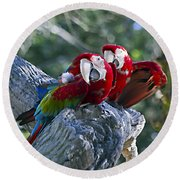 Two On A Branch Two Round Beach Towel