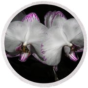 Two Orchids  Round Beach Towel