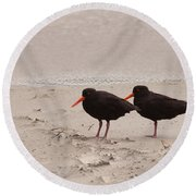 Two Oystercatchers Haematopus Unicolor On Beach Round Beach Towel