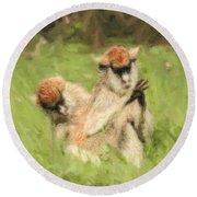 Two Patas Monkeys Erythrocebus Patas Grooming Round Beach Towel