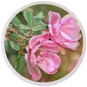 Two Pink Roses I  Blank Greeting Card Round Beach Towel