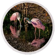Two Pink Spoonbills Round Beach Towel