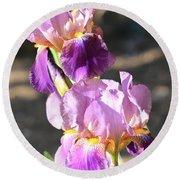 Two Purple Irises Round Beach Towel
