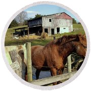 Two Quarter Horses In A Barnyard Round Beach Towel
