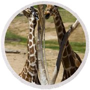 Two Reticulated Giraffes - Giraffa Camelopardalis Round Beach Towel