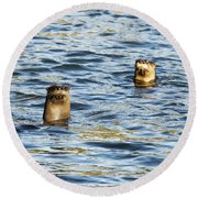 Two River Otters Round Beach Towel