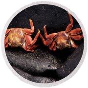 Two Sally Lightfoot Crabs Round Beach Towel