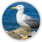 Two Seagull Round Beach Towel
