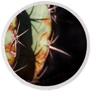 Two Shades Of Cactus Round Beach Towel